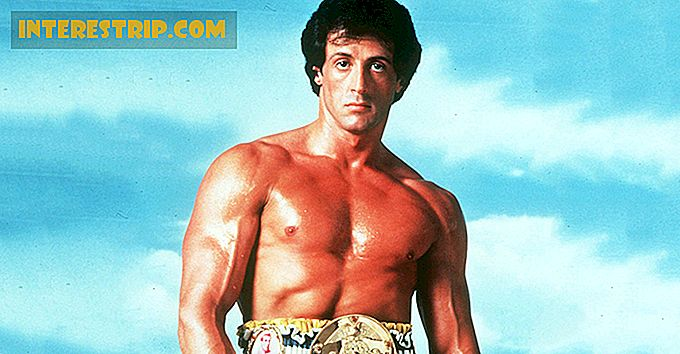 42 Knockout Facts About Sylvester Stallone