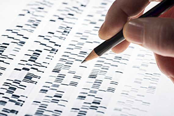 L'origine del test del DNA