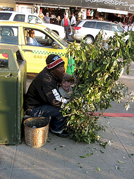 San Francisco Bushman