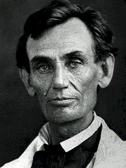Stories of Honest Abe's Family Tree