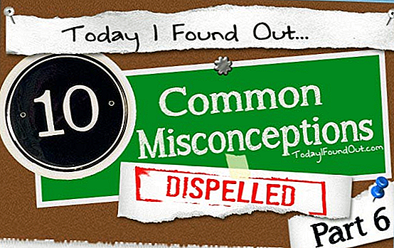 10 Common Misconceptions Disipelled Deel 6