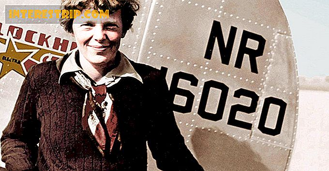 41 Vanishing facts over Amelia Earhart