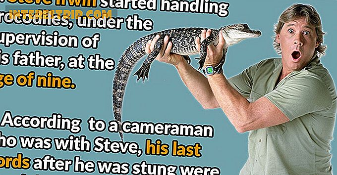 42 Wild Facts om Steve Irwin.