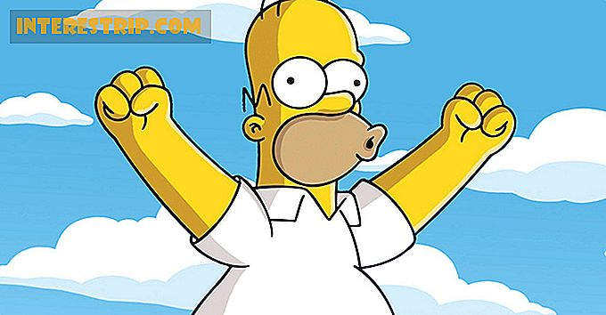 49 Tumbling Facts About Homer Simpson