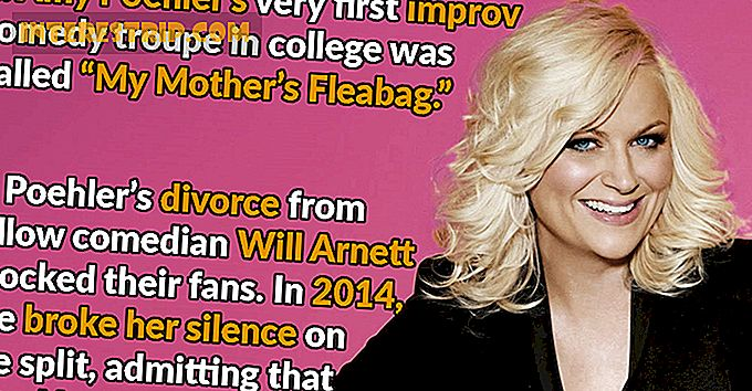 24 Funny Facts About Amy Poehler