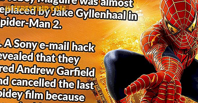 39 Fantastische feiten over de Spider-Man-films.