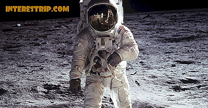 42 Cosmic Facts About Moon landings