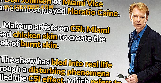 43 Crime-Busting Facts about CSI: Miami