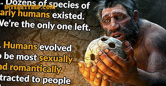 43 Wild Facts about Human Evolution