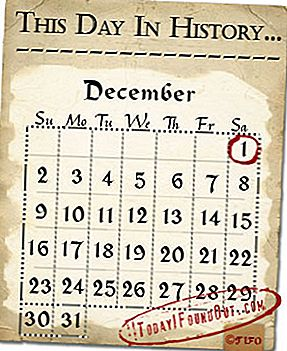 This Day in History: 1 december