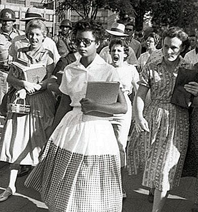 Denne dag i historien: 4. september - The Little Rock Nine